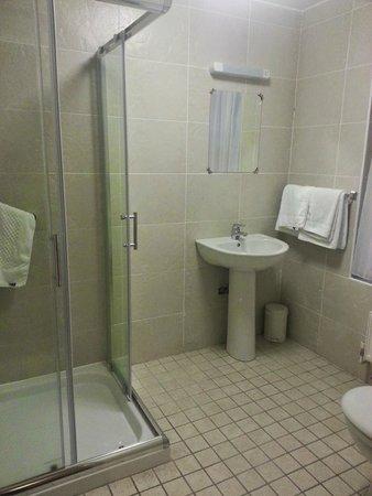 Castle Hotel: shower/toilet