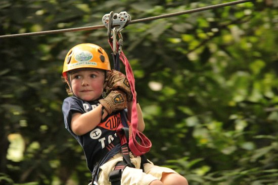 Canopy Safari: 4 year old