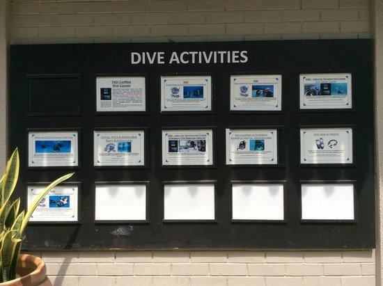 The Taaras Beach & Spa Resort : Diving activities