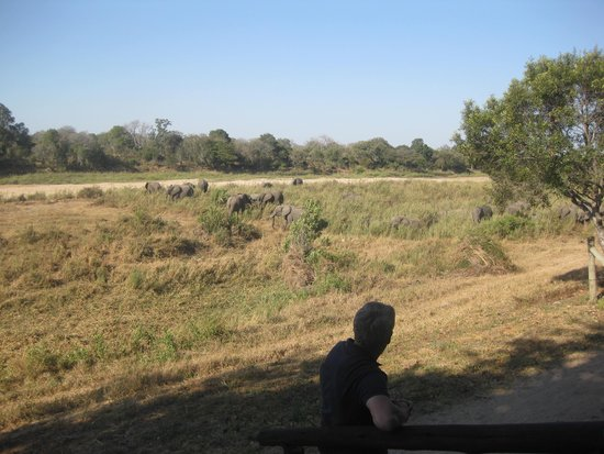 Umkumbe Safari Lodge: View across the river from our Chalet
