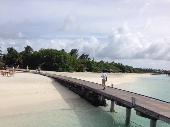 Olhuveli Beach & Spa Resort : The island
