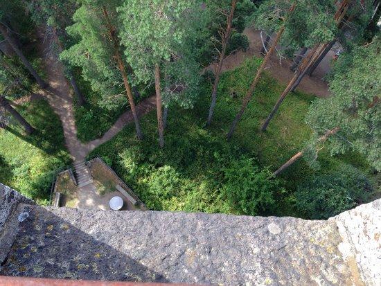 Aulanko: In cima alla torre
