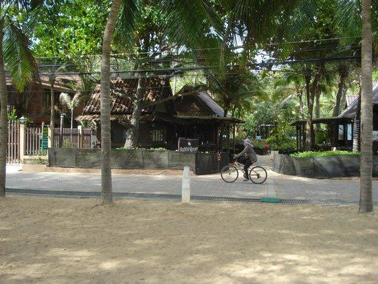Rabbit Resort: Вид на отель с пляжа