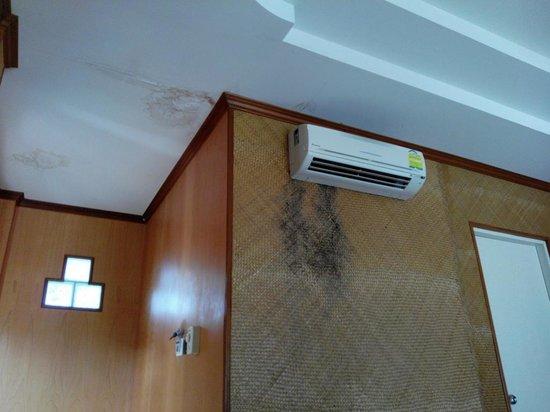 "Bow Thong Resort: ""Superior"" Zimmer mit Schimmel an der Wand"