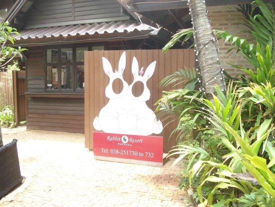 Rabbit Resort: Милое фото на память