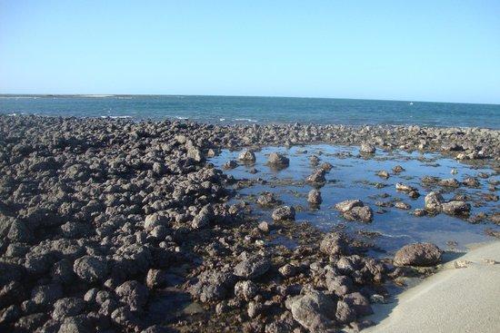 Barra Grande, PI: Rochas de Praia