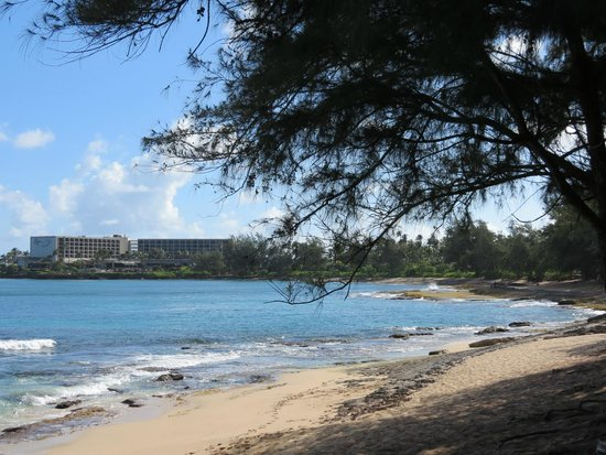 Turtle Bay Resort: View of the property
