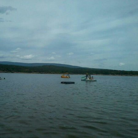 Playa Pita pantano de la Cuerda del pozo : En medio del pantano