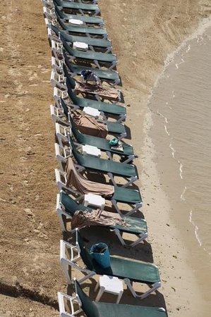 Sandals Ochi Beach Resort: sun bathing