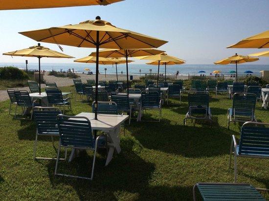 Dayton House Resort: Лежаки на поляне