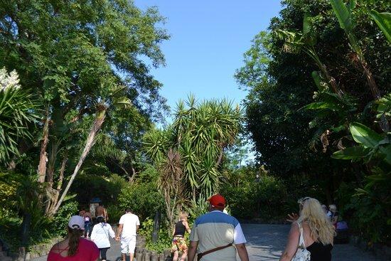 PortAventura Park: Территория  парка (очень малая часть)