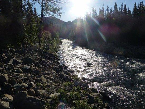 McKinley Creekside Cabins : Creek @ Creekside