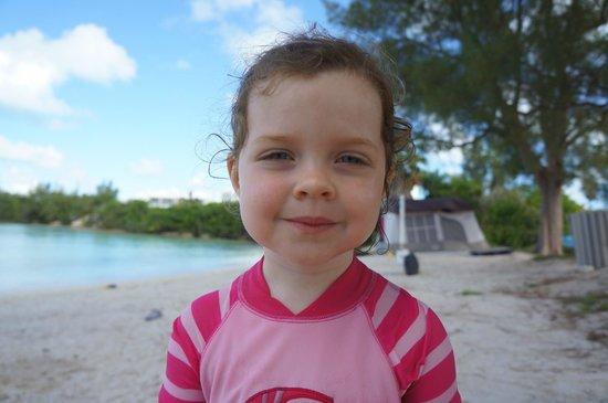 Shelly Bay Beach: Beach