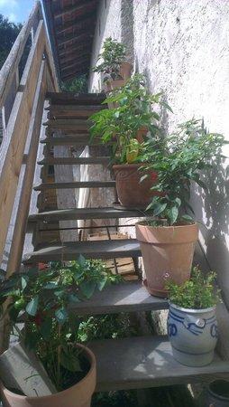 Pritzlwirt: Few of their home grown veggies