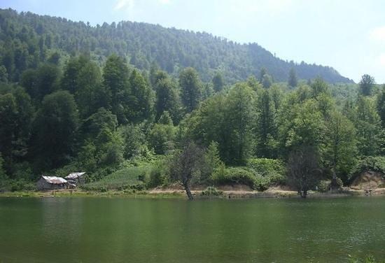 Sapanca, Turkey: Very green