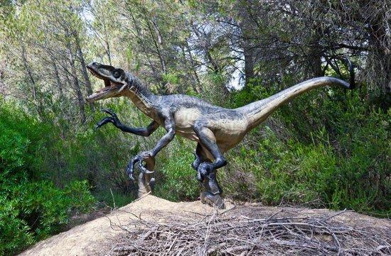 Musee - Parc des Dinosaures : ...