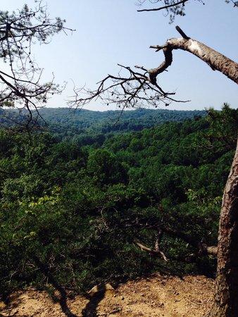 Cantwell Cliffs, Hocking Hills, Logan, Ohio