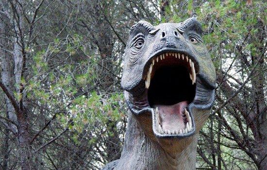 Musee - Parc des Dinosaures : ....