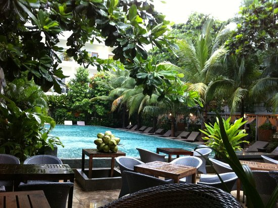 Plantation - urban resort & spa: Piscine, Piscine, Piscine