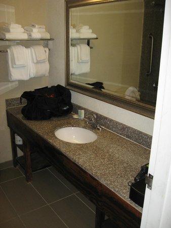 Rodeway Inn I-95 North: Sink area bathroom.