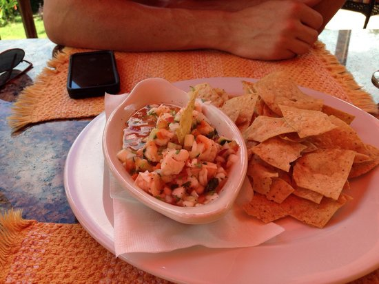 Sleeping Giant Lodge: The ceviche for lunch is amazing!