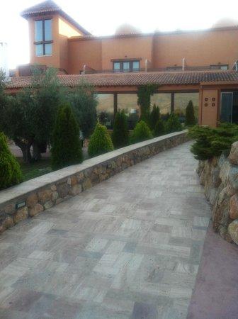 Hacienda Señorio de Nevada: Garden
