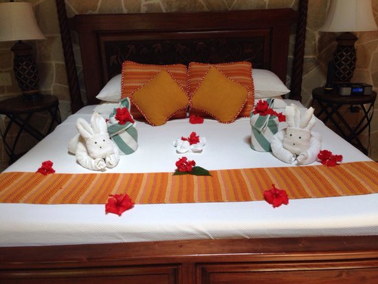 Sleeping Giant Lodge: Daily towels animals made on our bed! Housekeeping was so talented at the things they could make