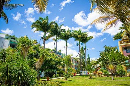 Canella Beach Hotel-Restaurant : Le jardin de l'hôtel Canella Beach