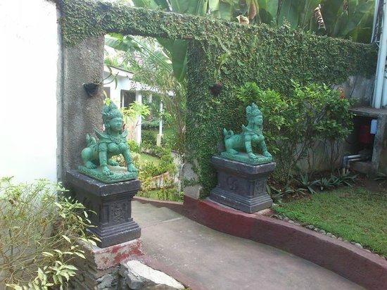 Sendok Hotel : jardines
