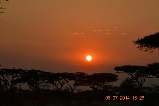 Ndutu Safari Lodge: coucher du soleil