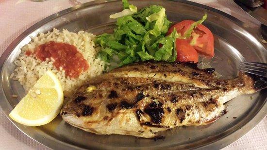 Taverna Katerina: Orata rossa pescata di paros