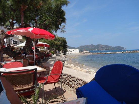 Melis next to the sea.