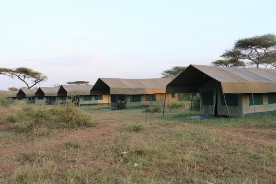 Robanda Tented Camp : Le camp