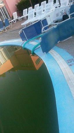 Panorama Sidari: Finally closed the disgusting pool at corfu panorama to all guests bit just the children !!!!
