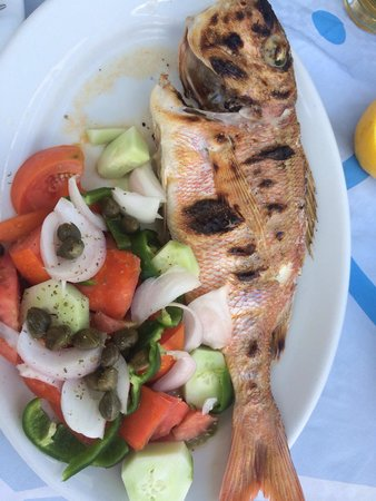 Drakos Taverna : Red Snapper