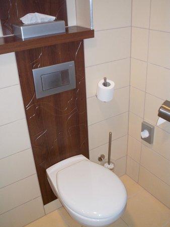 Hotel Ginkgo Sas: Toilet