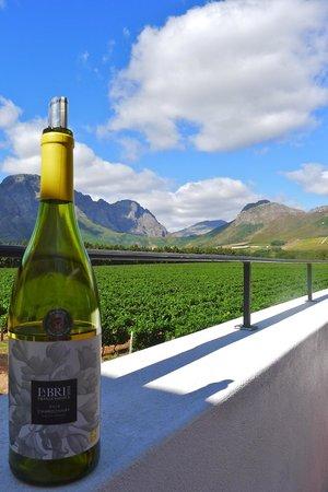 Franschhoek Wine Tram: La Bri wine tasting area and vineyards