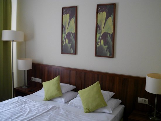 Hotel Ginkgo Sas: Room