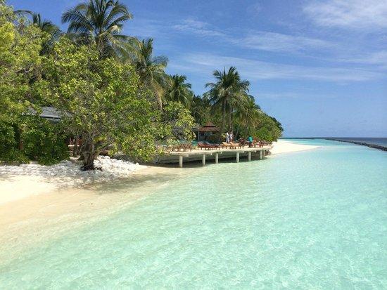 Royal Island Resort & Spa: swimming pool side