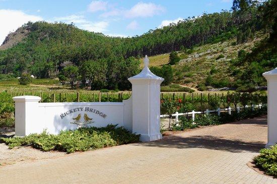 Franschhoek Wine Tram: Rickety Bridge vineyards
