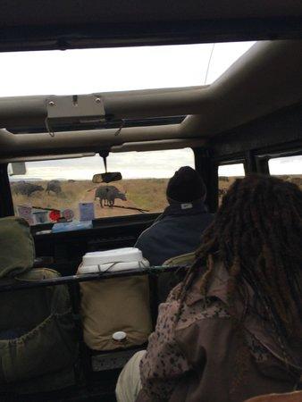 Nairobi Tented Camp: get close to game