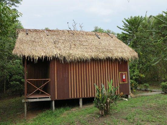 Amazon Turtle Lodge : бунгало