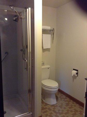 Jack Daniels Motor Inn : Bathroom view