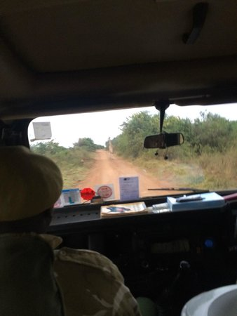 Nairobi Tented Camp: guided by an armed ranger