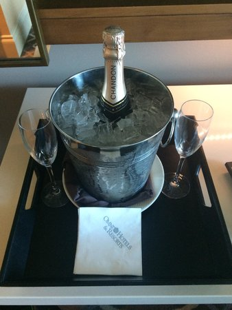 Omni Dallas Hotel : Champagne waiting for us in the room.