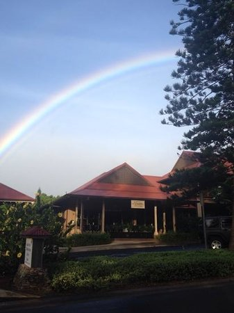 The Wine Palette : afternoon rainbow