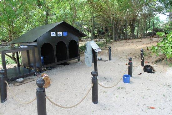 Maritim Resort & Spa Mauritius: Maritim Kennels