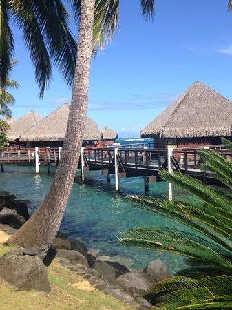 InterContinental Resort Tahiti : Bungalows