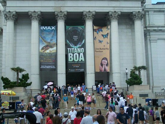 National Air and Space Museum: A special exhibition of the titanic boa that swallows an alligator whole