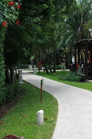 Iberostar Cozumel: walkway